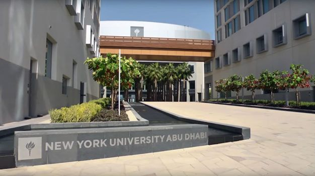 Post Doctoral Associate Position In Uae New York University Nyu York University Phd Life University