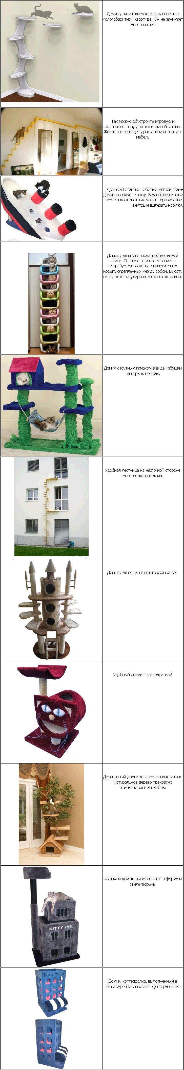 domik-dlya-koshki-svoimi-rukami3.jpg (727×4210)