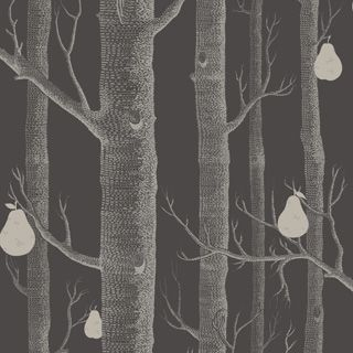 Woods & Pears 95/5031 - Contemporary Restyled - Cole & Son