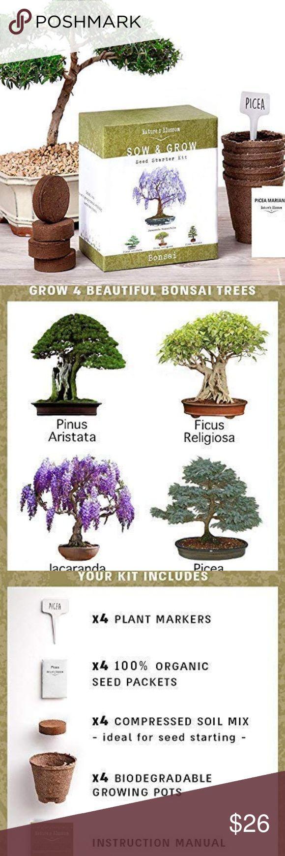 Nature S Bonsai Tree Garden Seed Starter Kit Bonsai Tree Seed Starter Kit Garden Seeds
