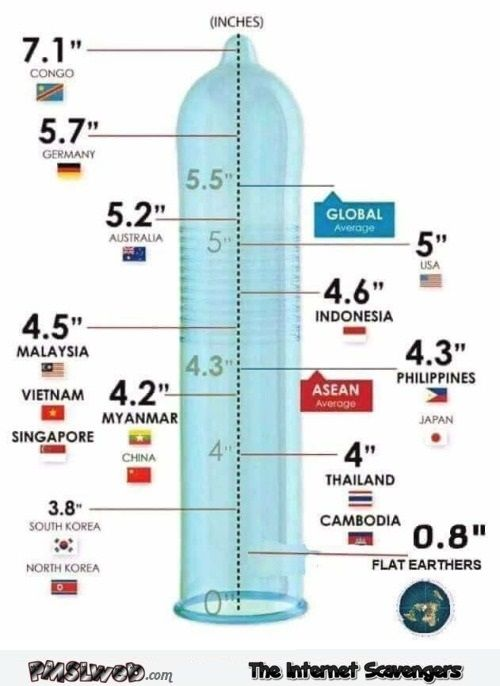 Adult humor penis size images