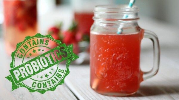 How To Make An Easy Probiotic Drink (way easier than Kombucha!) | Primally Inspired
