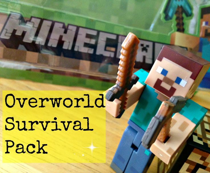 A review of the Minecraft Overworld Steve Toy. It comes with many accessories. It's a really fun toy to play with especially for kids. I love this action figure!