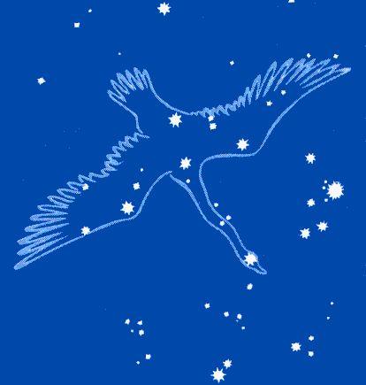 cygnus_fig.gif (414×435)