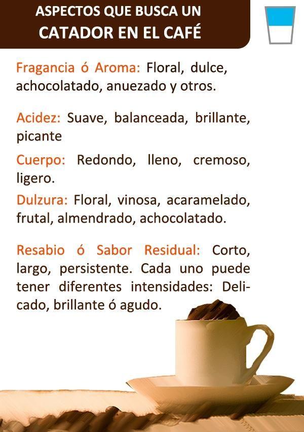 Así se #cata un buen #café