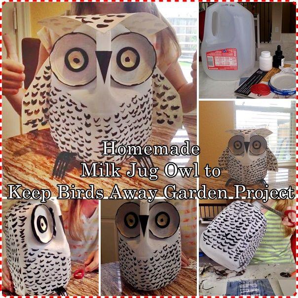 Homemade Milk Jug Owl to Keep Birds Away Garden Project Homesteading  - The Homestead Survival .Com