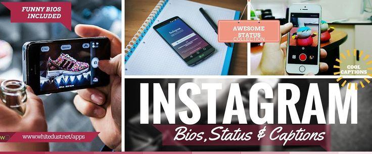 Funny Instagram Bios & Ideas