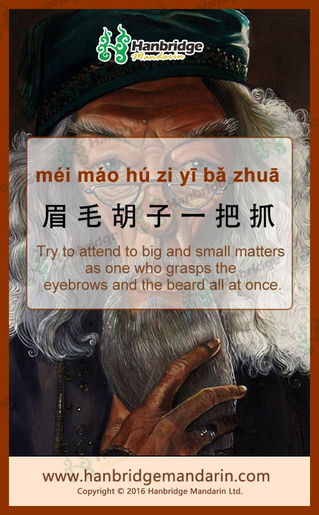 Chinese idiom  眉毛胡子一把抓 méi mɑo hú zǐ yì bǎ zhuā  Try to attend to big and small matters as one who grasps the eyebrows and the beard all at once.