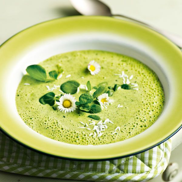 Kresse-Suppe Dazu passen geröstete Weissbrot-Croûtons oder fein geschnittene Scheiben einer rohen Forelle, die Sie zum Schluss in die heisse Suppe einlegen.