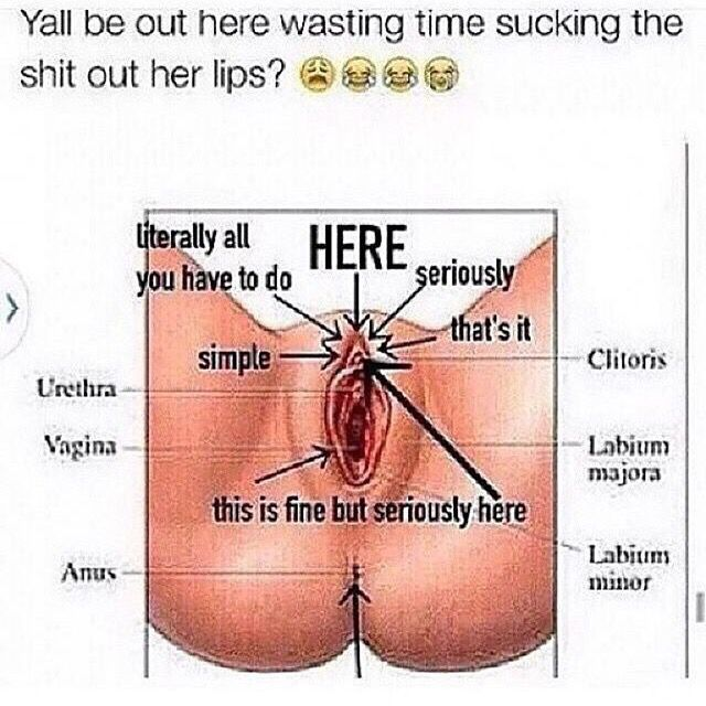 Gay chubby porn tube sites