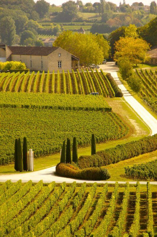 Bild aus dem Jahr 2012 aus der Region Bordeaux Rechtes Ufer, Frankreich