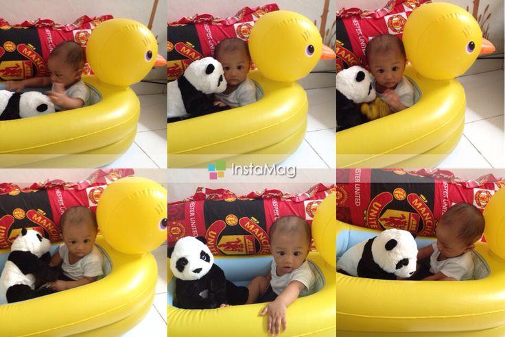 Playing with panda