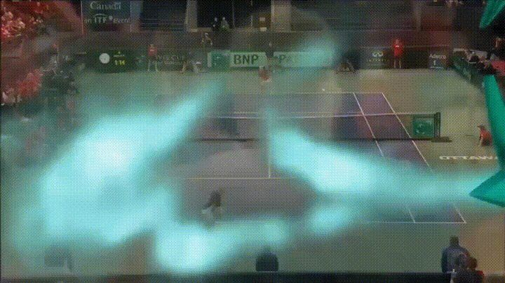 Canadian tennis player hits umpire in the face