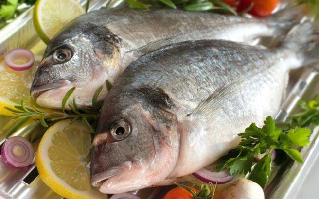 Τα ψάρια και οι εποχές τους