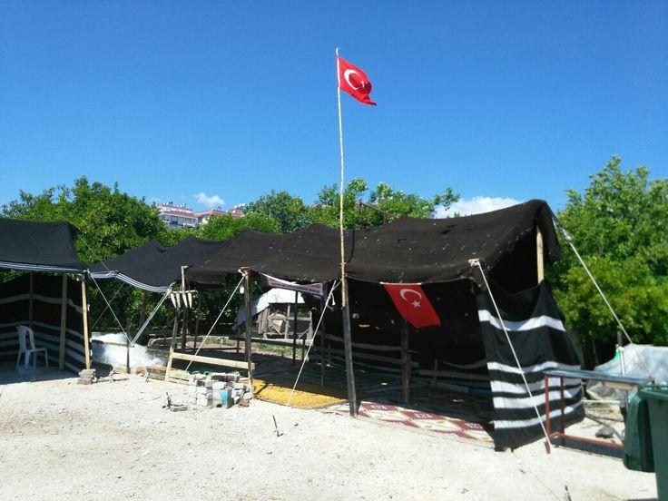 Yörük Çadırı Etkinliği Antalya Kumluca