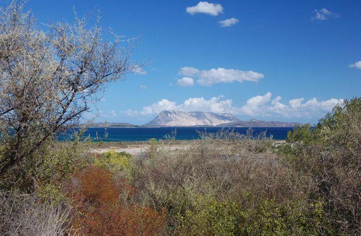 Isola di Tavolara da San Teodoro, Sardegna.