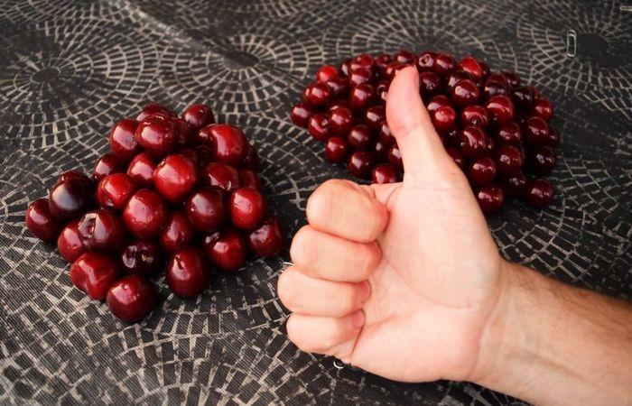 Как быстро удалить косточки из вишни и (почти) не запачкать руки?