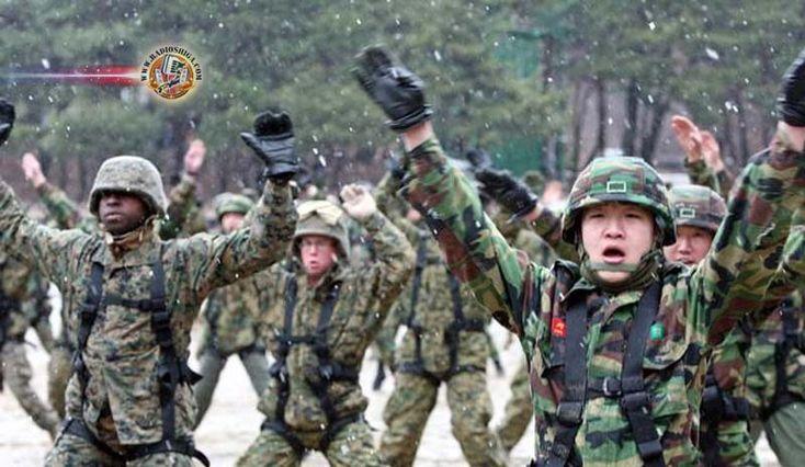 Exercícios militares conjuntos dos EUA e da Coreia do Sul terminam neste domingo. Os Estados Unidos e a Coréia do Sul concluirão seus exercícios militares c