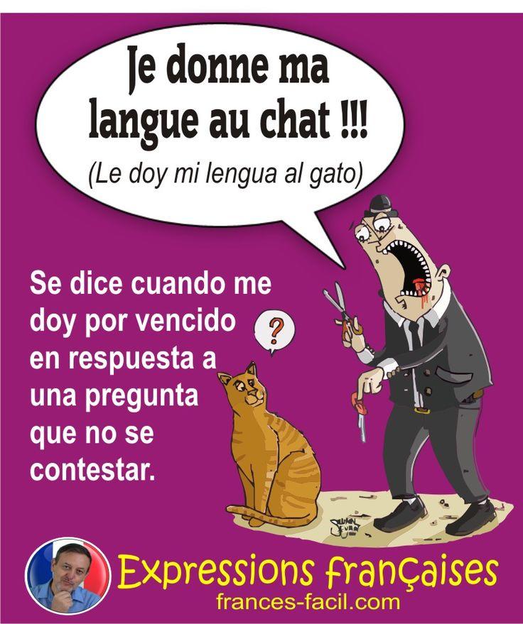 Expresión francesa: Donner sa langue au chat  - (Darle su lengua al gato)
