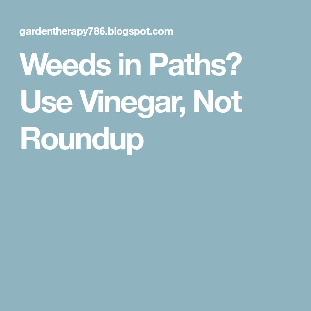 Weeds in Paths? Use Vinegar, Not Roundup