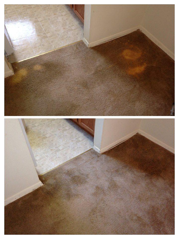 Bleach Spot Repair Domestos Bleaching Type Cleaning Agent Spilt On Carpet Carpet Trends Carpet Cleaning Recipes Carpet Cleaning Machines Stain Remover C