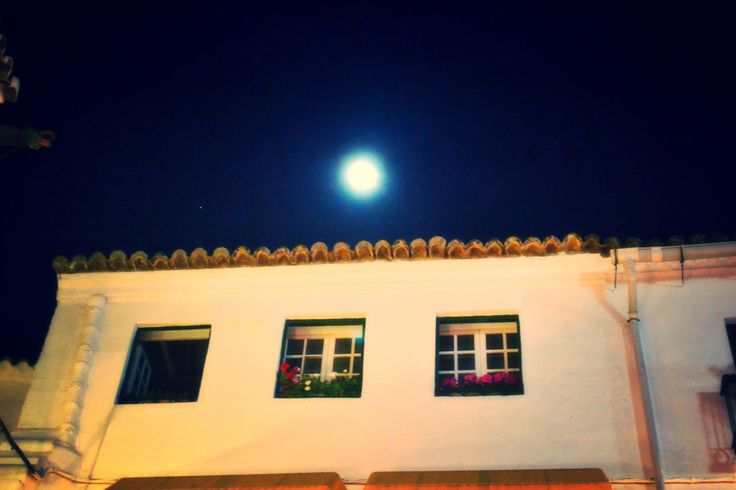 Marbella at night