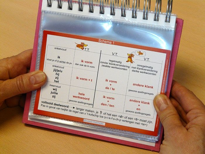 Opzoekboekje | Braams ( dyslexie en dyscalculie )