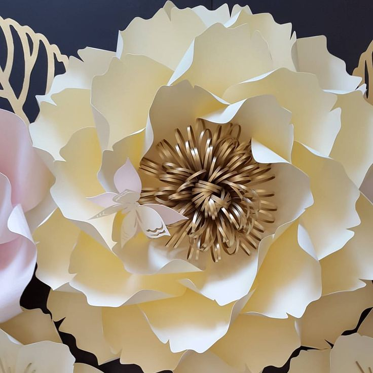 Best 58 centers for paper flower images on pinterest paper flowers 299 curtidas 71 comentrios posh paper designs poshpaperdesigns no instagram mightylinksfo