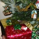 This easy-to-build system is disguised as a wrapped present under the Christmas tree. It allows easy refilling and can water your tree for several days if you are away from ...
