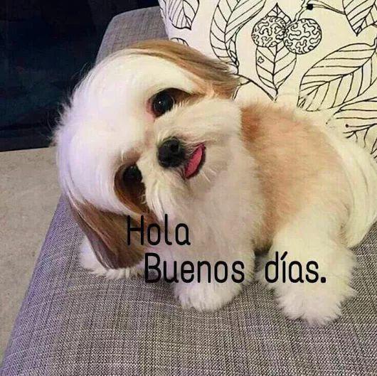 Buenos días feliz inicio de semana amig@s abrazo bendiciones  - Manuel López El Príncipe - Google+