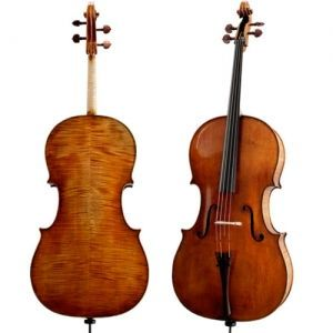 Cello Paesold PA611