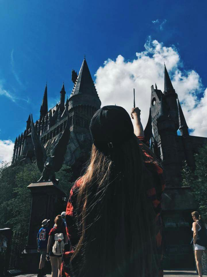 wizarding world omg someone pls take me there
