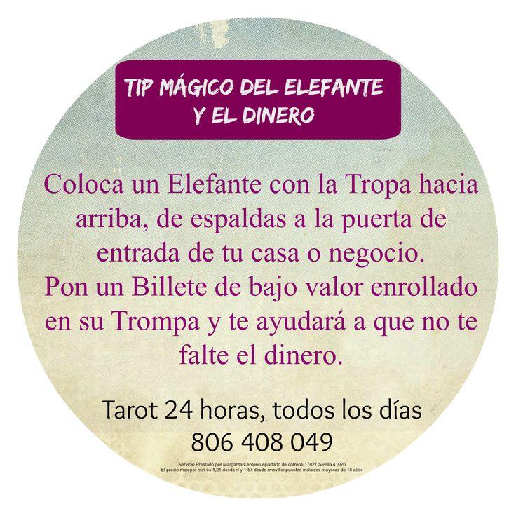 Consejo Mágico del Elefante para que no falte el Dinero | ~ TAROT con Margui Centeno