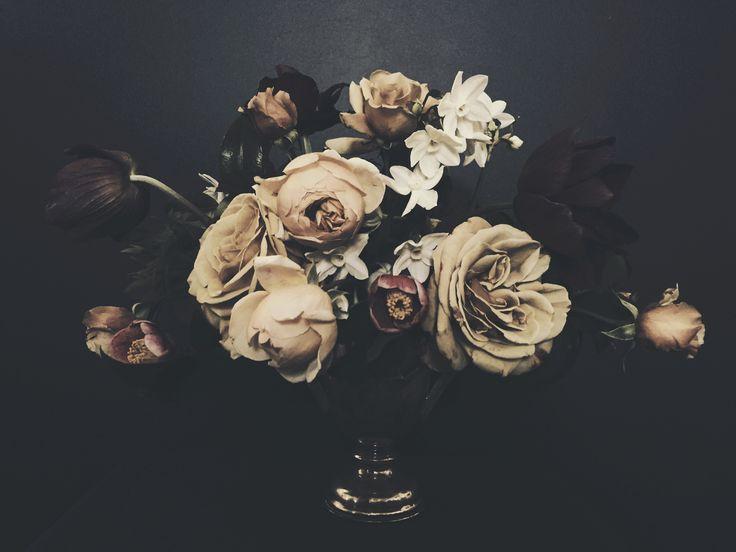 TROPHY - Ashley Woodson Bailey - Florography