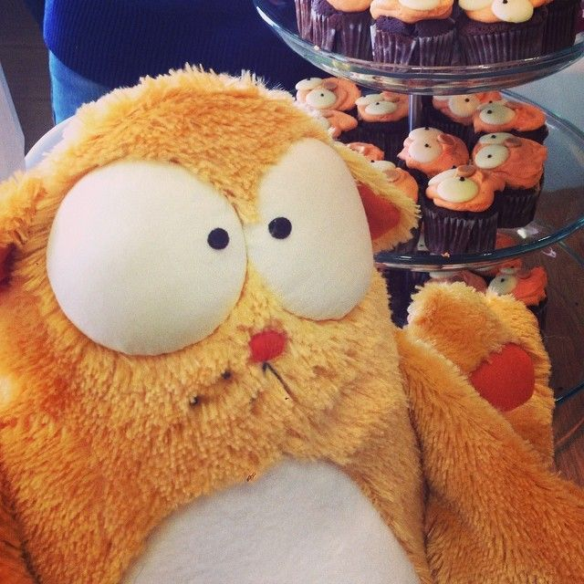 Legcat comes to life at #Viber offices and enjoys a fresh batch of cupcakes!