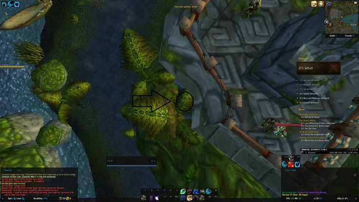 Apparently you can get stuck in Zul'Aman with no way out #worldofwarcraft #blizzard #Hearthstone #wow #Warcraft #BlizzardCS #gaming