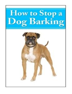 how to get your dog to stop barking in crate