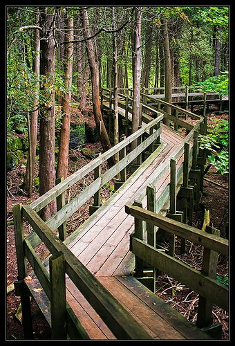 ˚Walk in the Park, Crawford Lake Park - Milton, Ontario, Canada