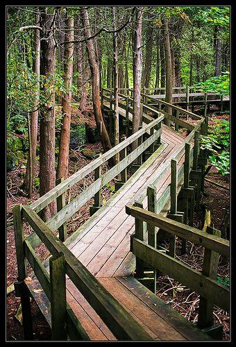 ˚Walk in the Park, Crawford Lake Park - Milton, Ontario, Canada