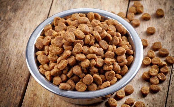 Recette de croquettes pour chien et chat fait maison, adaptée aux besoins journaliers de votre animal, constituée de viande, féculents, légumes et graisses.