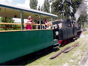 Small steam train