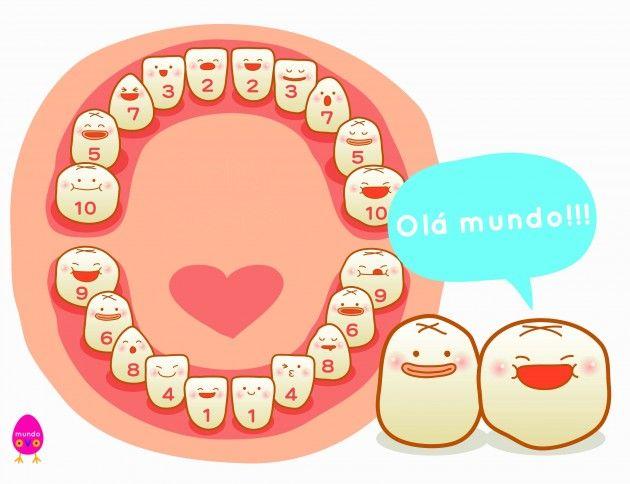 Ordem de nascimento dos dentes de um humano
