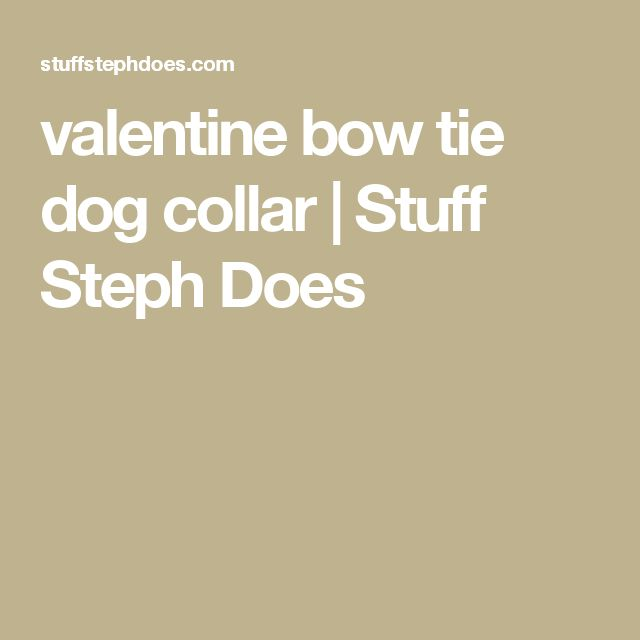 valentine bow tie dog collar | Stuff Steph Does
