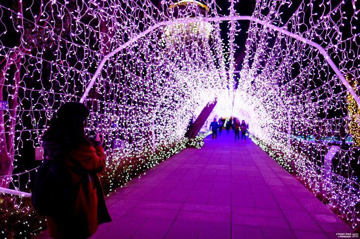 https://flic.kr/p/PkMqTR | Tokyo_Monogatari_EP7_5 | My Blog  │ Facebook  遊記連結:【東京物語日記】七、海街日記(三)湘南的寶石