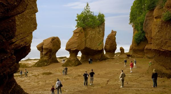 Walk on the Ocean Floor at The Hopewell Rocks, Hopewell Cape, New Brunswick Canada