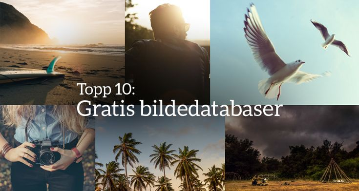 Verdens 10 beste gratis bildedatabaser