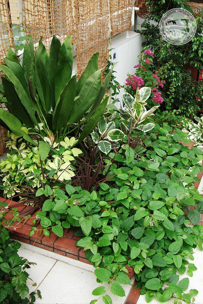 #ogródzimowy w budynku 35 / #wintergarden in building no. 35