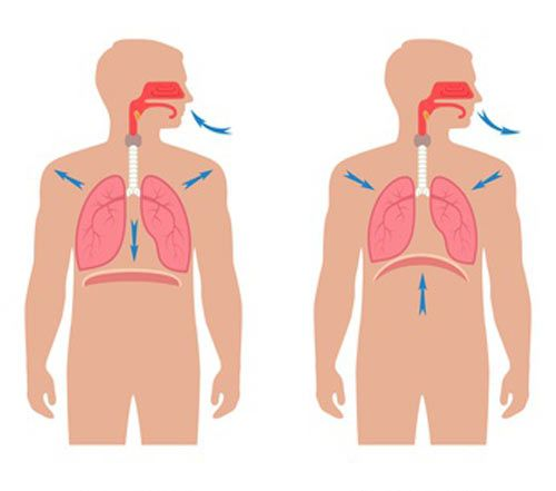 Learn 5 types of sleep apnea exercises that can improve the quality of sleep. Practice these exercises daily to get positive results starting from the first month..