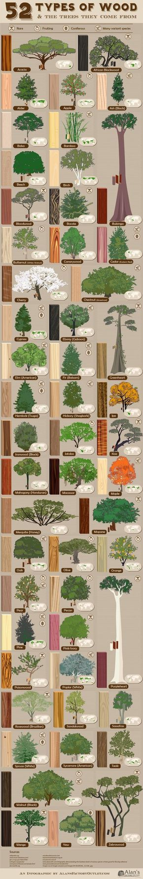 Familiarity with #tree types and #wood grain is one of the most important skills of #woodworking.: