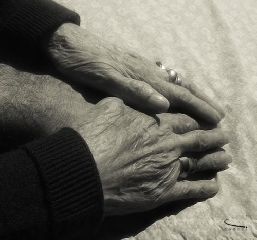 Hands that warm, encourages and sustains. Happy day, my mothr!